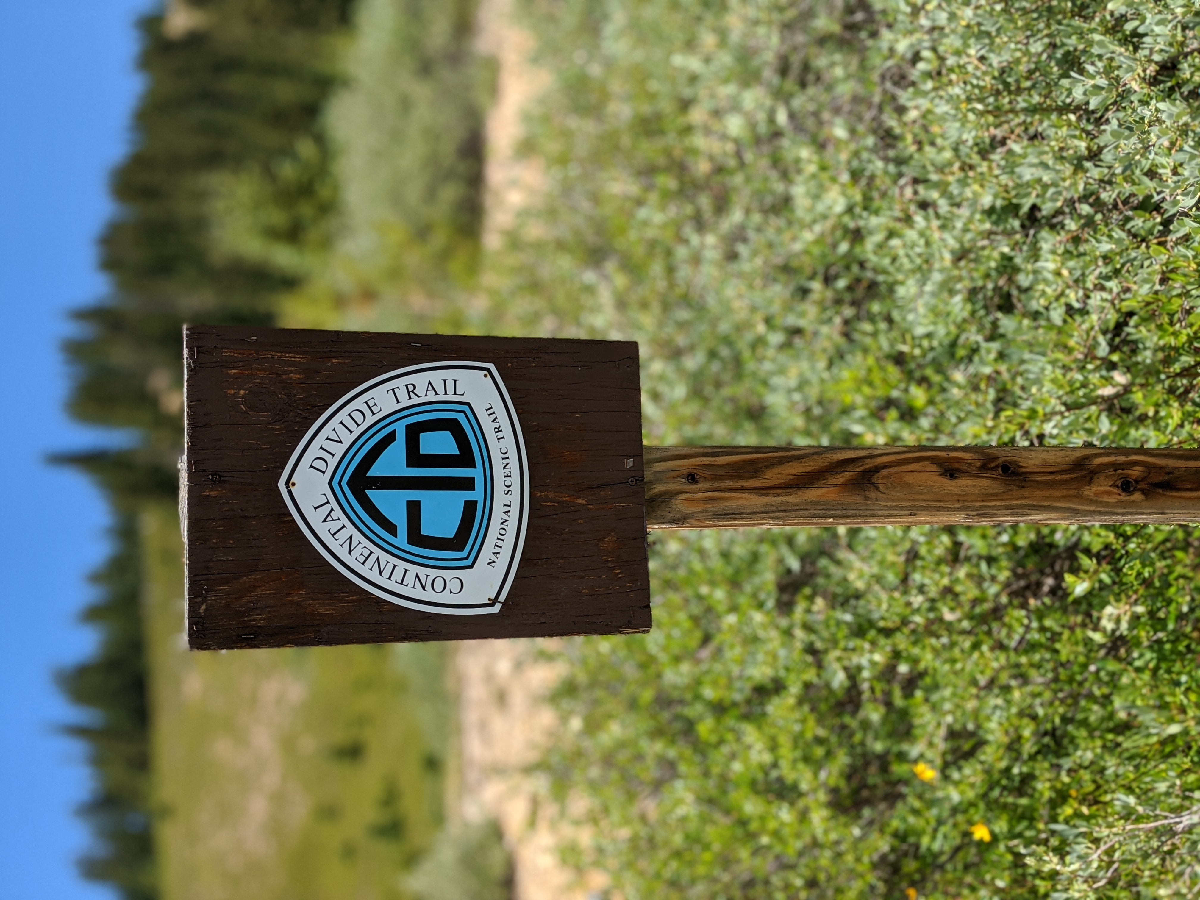 The Continental Divide Trail medallion at the Berthoud Pass Trailhead.