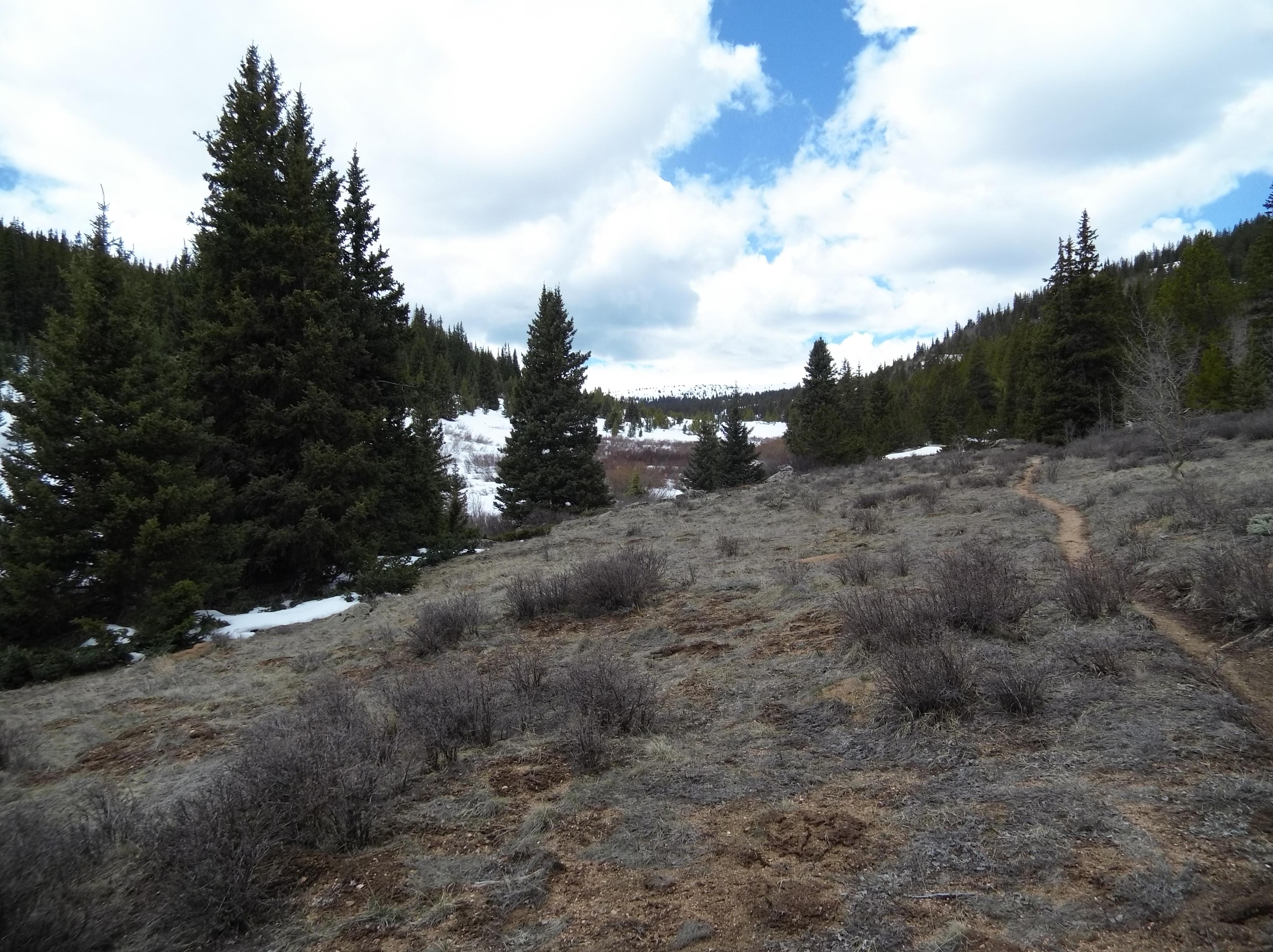 The end of the road in the Buffalo Peaks Wilderness.